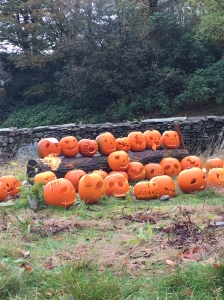 Allan Bank Pumpkins