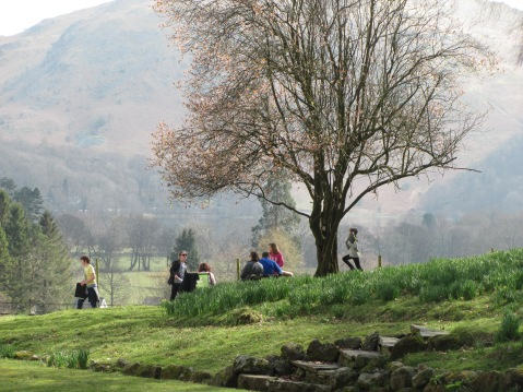 April Blossom in Grasmere