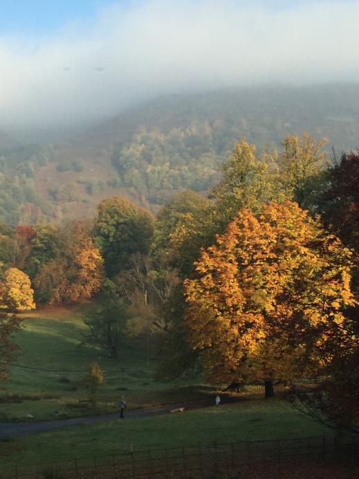 Autumn Trees Grasmere