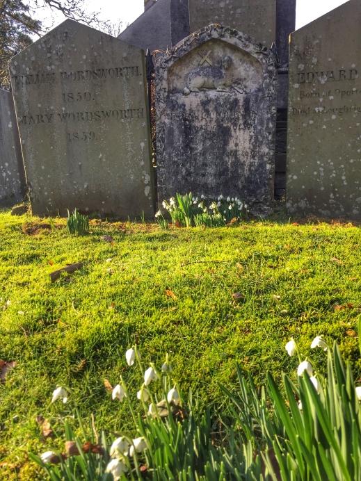 Wordsworth Grave snowdrops