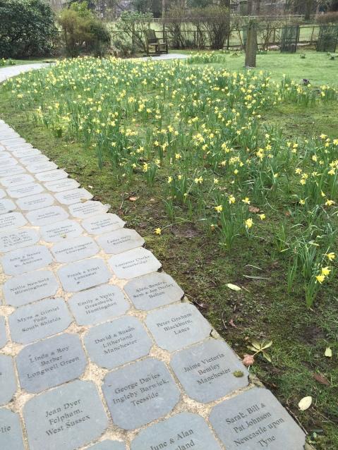 Grasmere Daffodil Garden